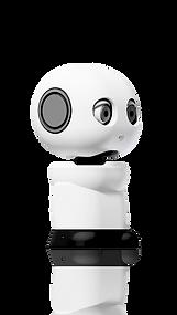 MAKI edu Humanoid Robot Rendering ver. 1.2