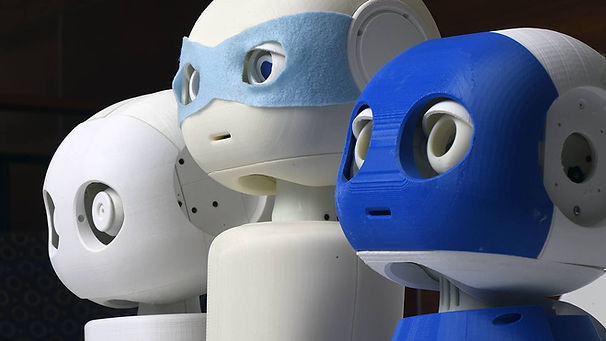 Johns Hopkins MAKI Humanoid Robots