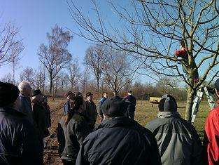 Baumschnittkurs 26.02.2011 006.JPG