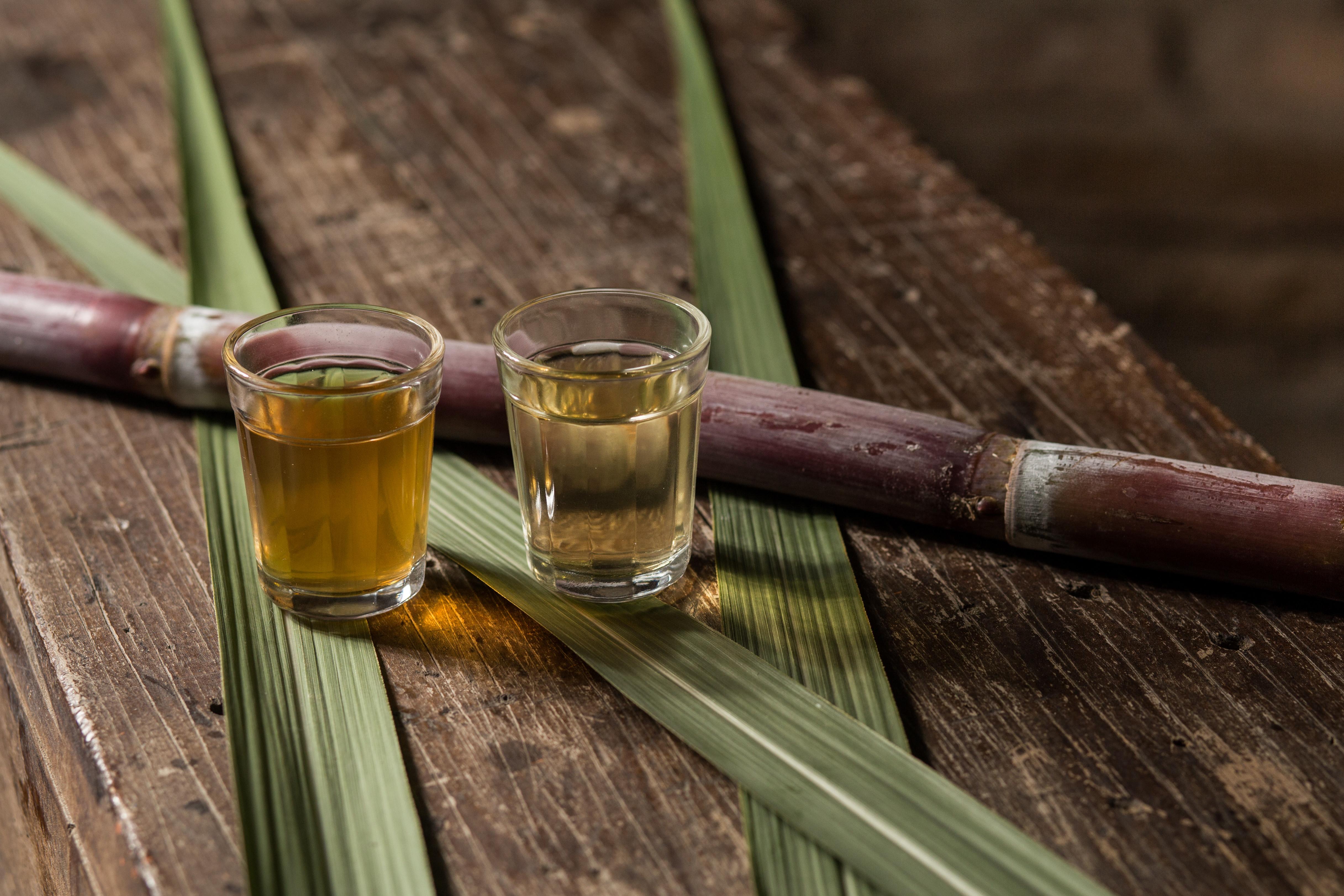 Rum Tasting Session