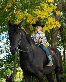 Horse Shoot-16.jpg