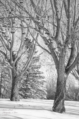 Winter's Of Yesteryear