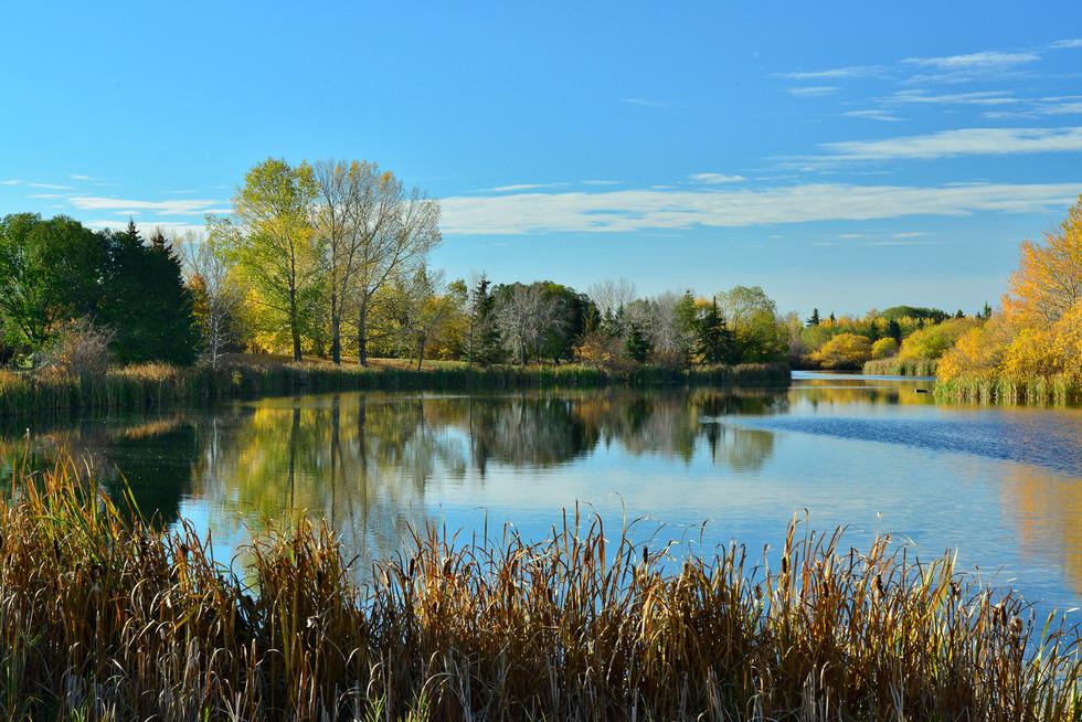 Fall Taking hold on FredJones Park