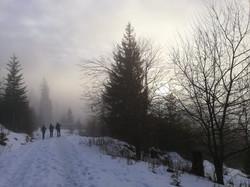 Rückweg durch den Nebel