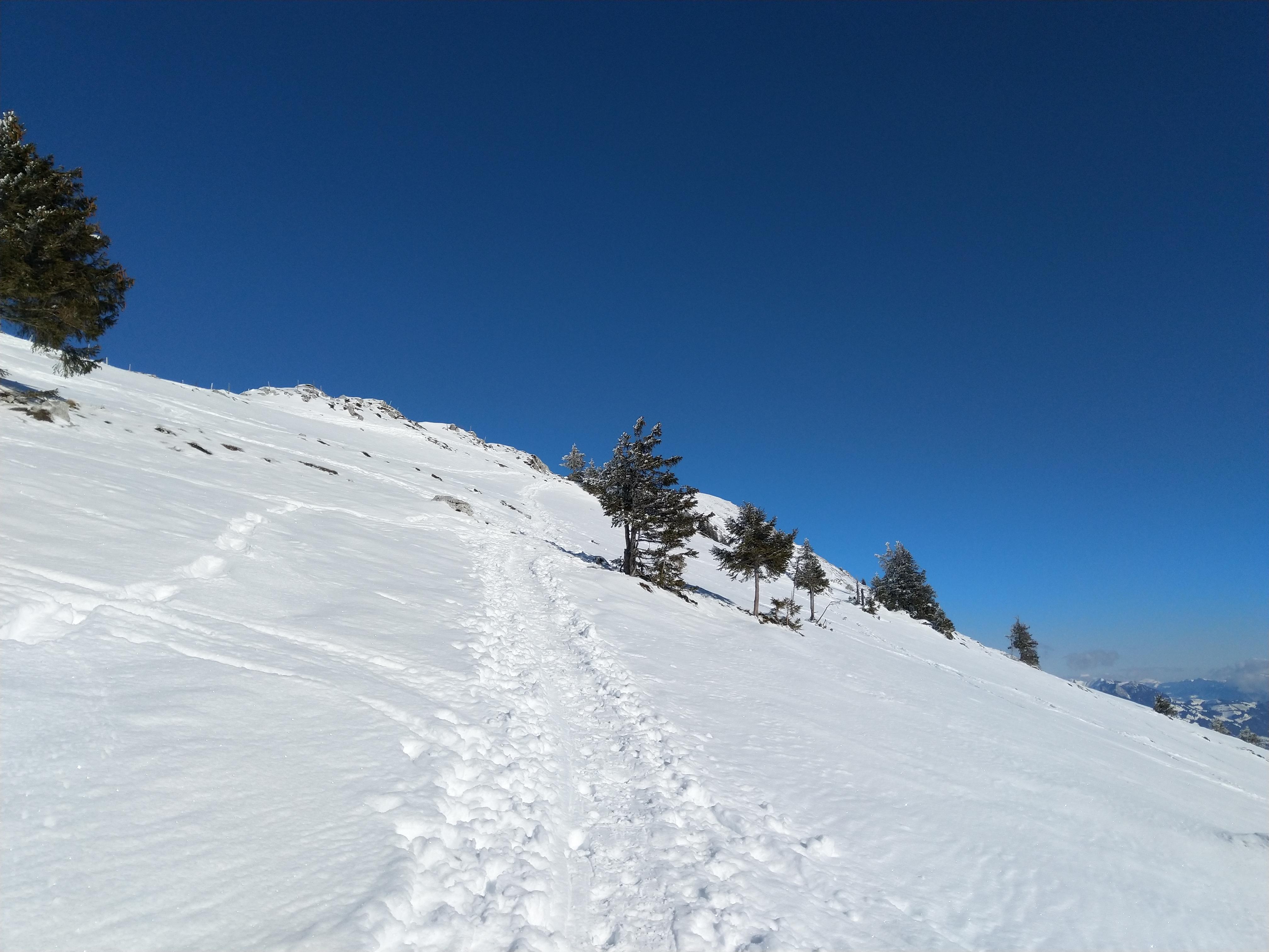 Der Weg Richtung Gipfel