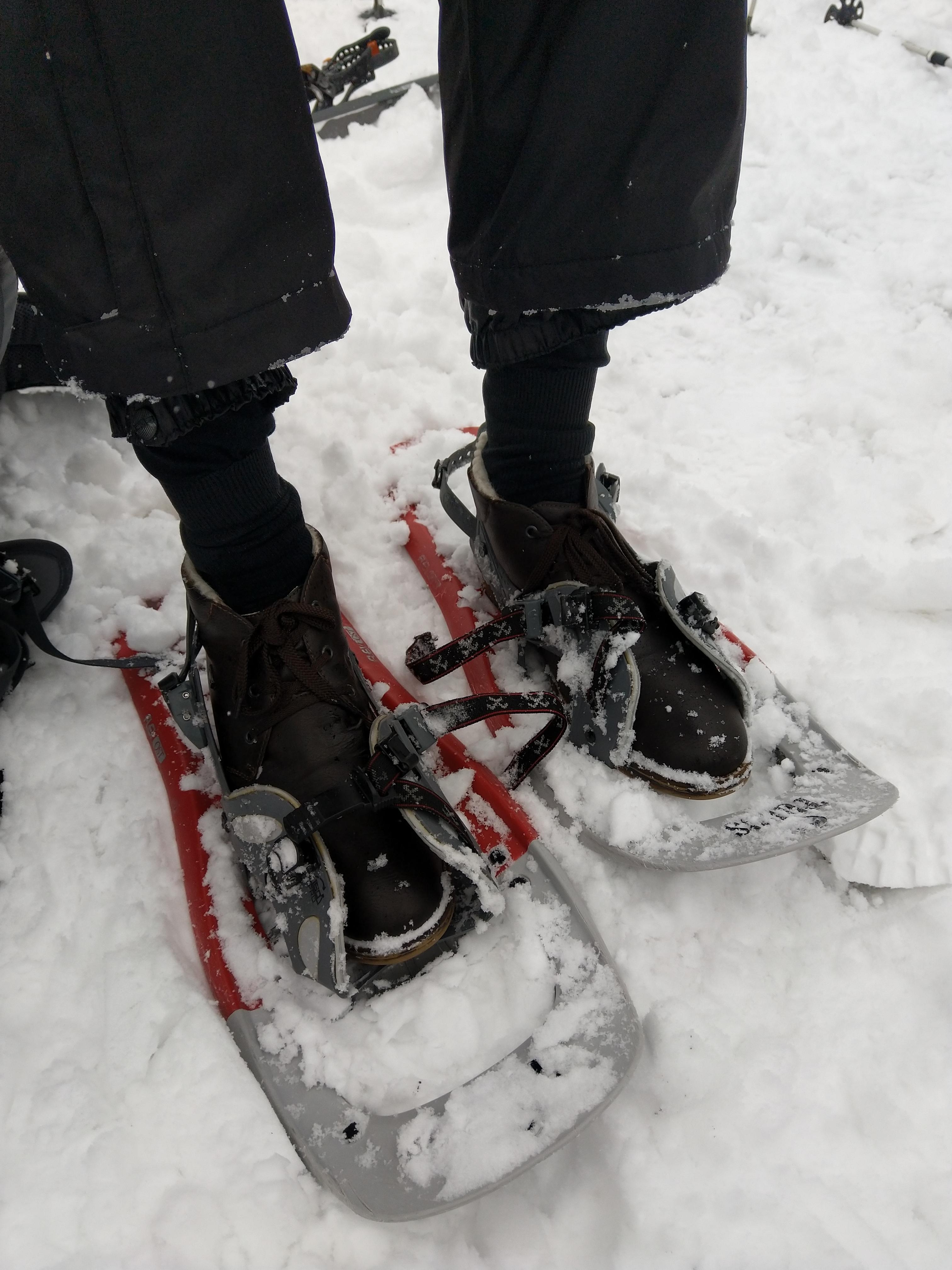 Schneeschuhwanderung Kemmeribodenbad
