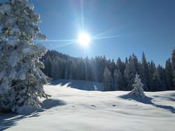 Wärmende Sonnenstrahlen - Schneeschuhwanderung Schwanden