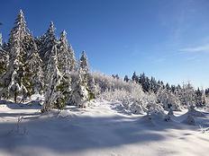 Winterlandschaft - go-trekking.ch