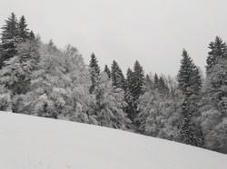 Es schneit und schneit und schneit