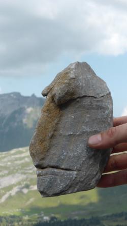 Stein Kopf