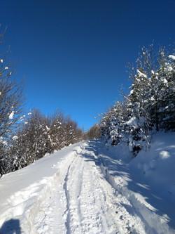 Weg in den Himmel - Schneeschuhwanderung Schwanden