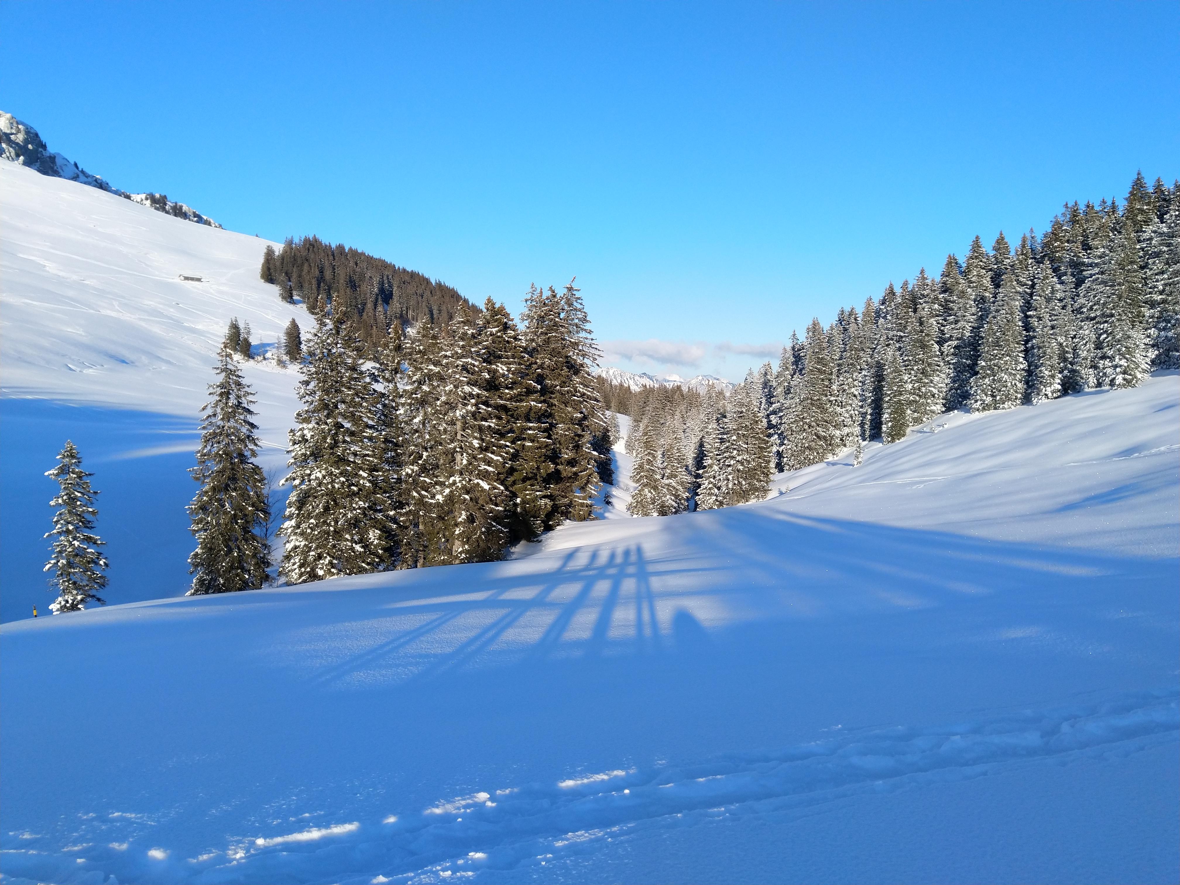 Die Schatten tanzen im Schnee