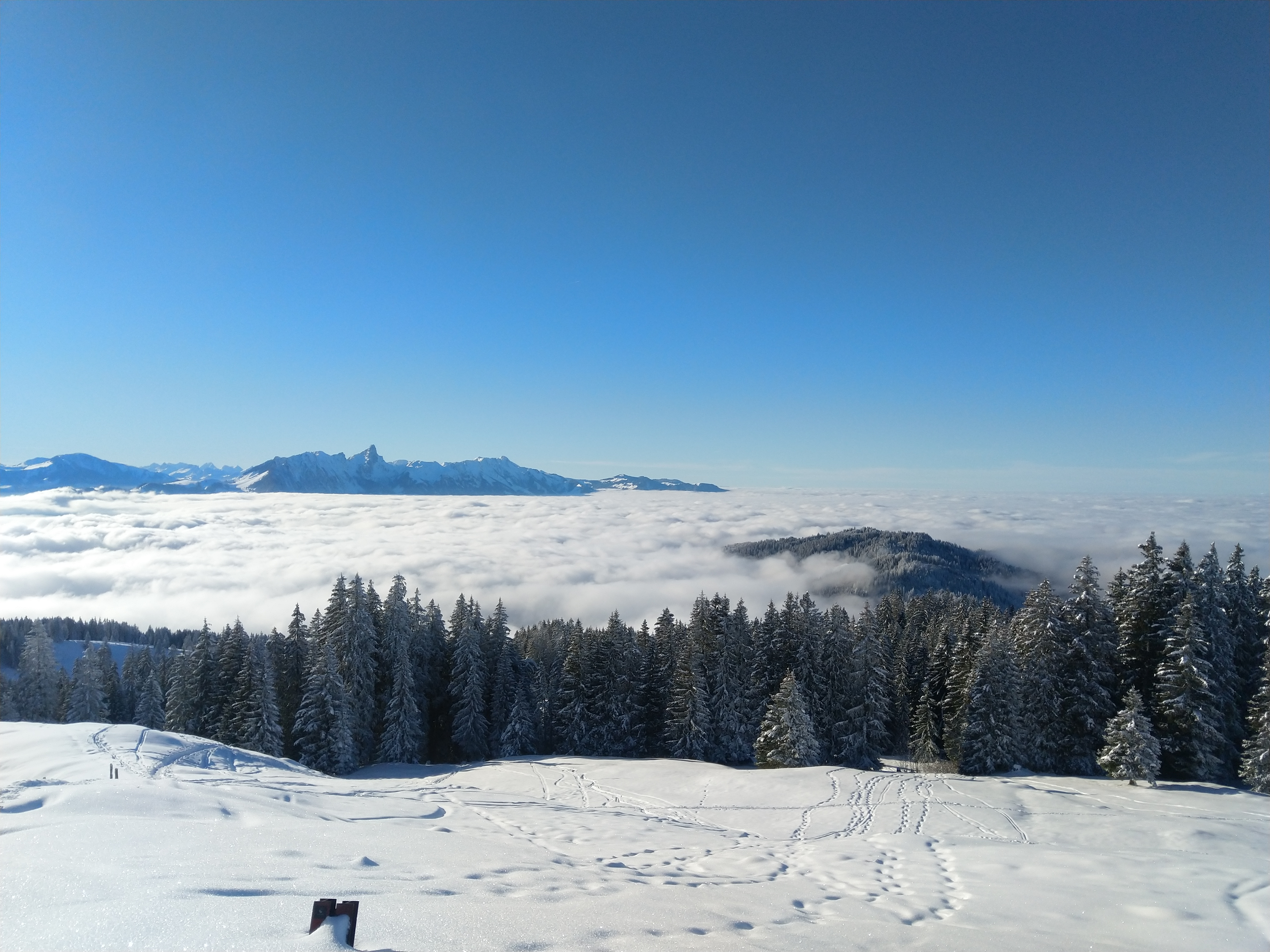Nebelmeer mit dem Stockhorn - Schneeschuhwanderung Schwanden