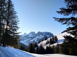 Die Gastlosen - Tiefer Winter - Schneeschuhwanderung Jaunpass