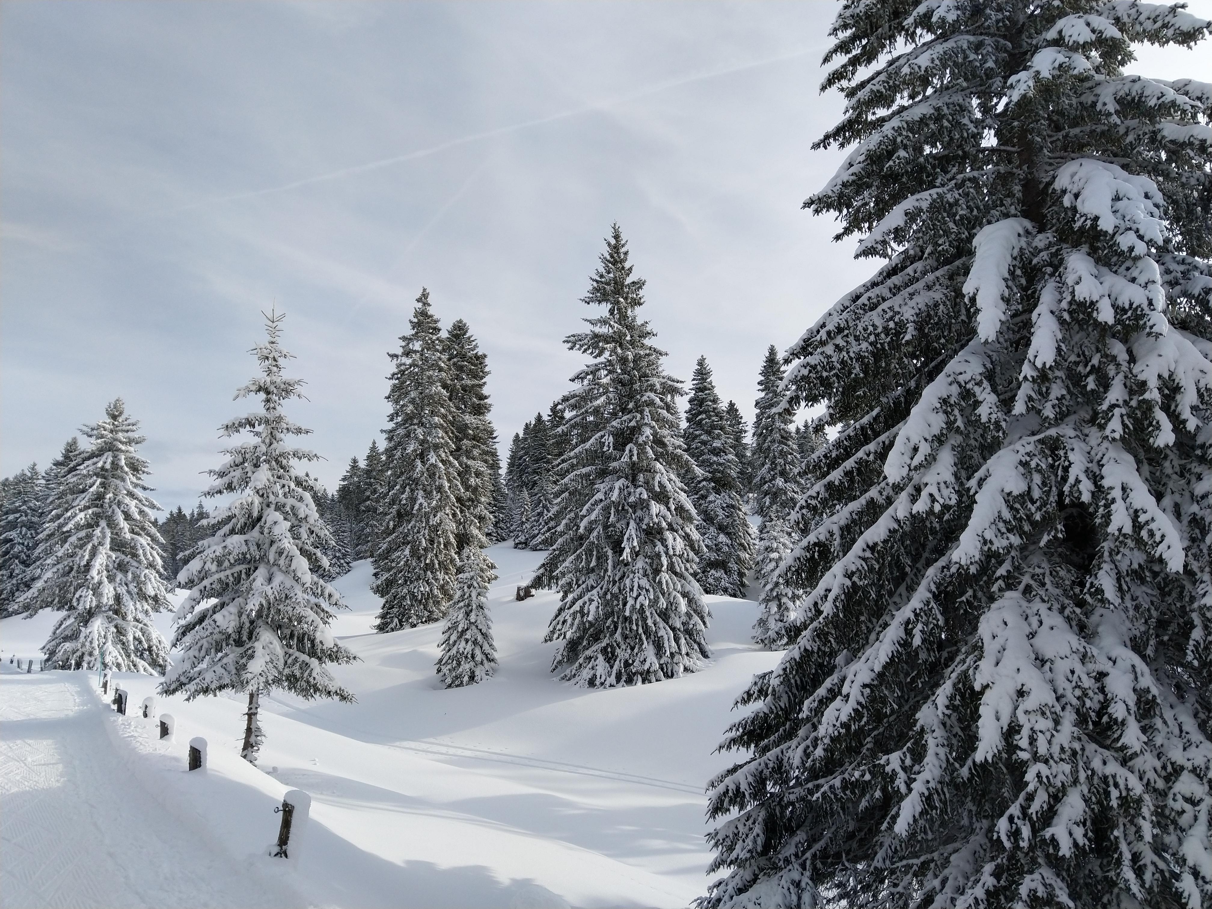 Traumhaft... Jura Haute Route 2