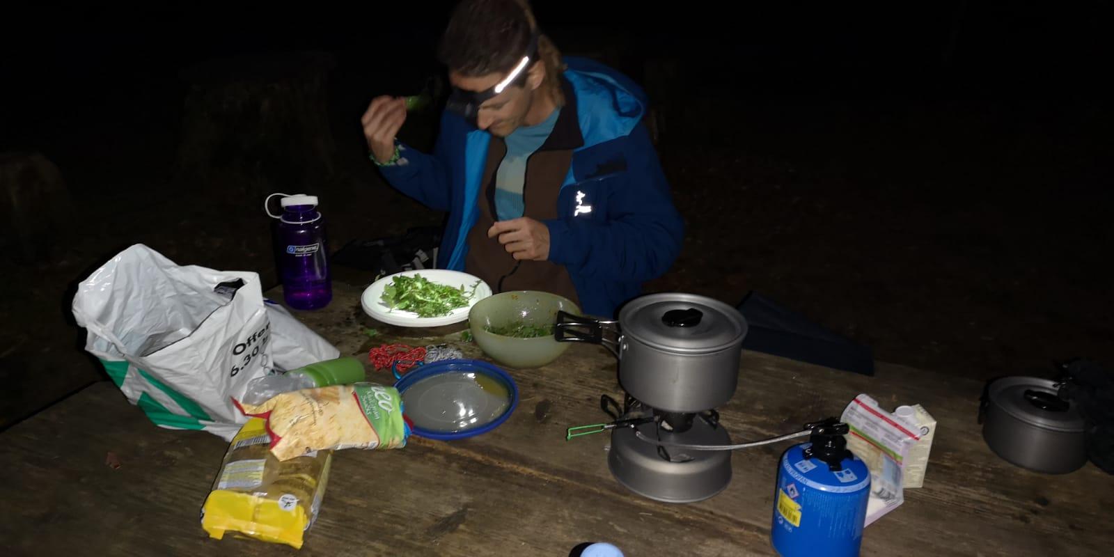 Abendessen im Wald