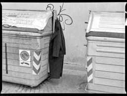 Brescia 2015