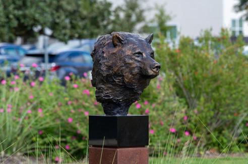 Grizzly Bear Portrait (Bronze)