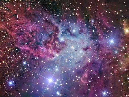 Poussières d'étoiles, conscience et évolution.