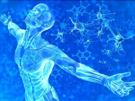 AVRIL présente une mise à niveau de la MATÉRIALISATION PHYSIQUE 4D DU CORPS selon le corps cristalli