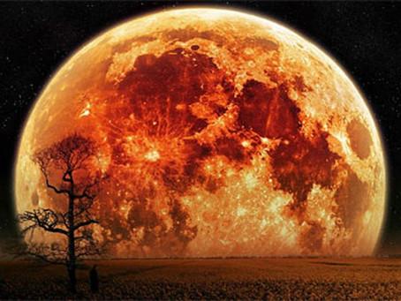 L'extra Super Lune du lundi 14 novembre au plus proche de la Terre depuis 1948