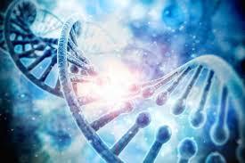 De l'ADN à 2 brins vers l'ADN quantique à 12 brins