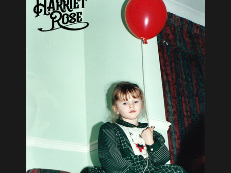 Review: Small Town Chains - Harriet Rose