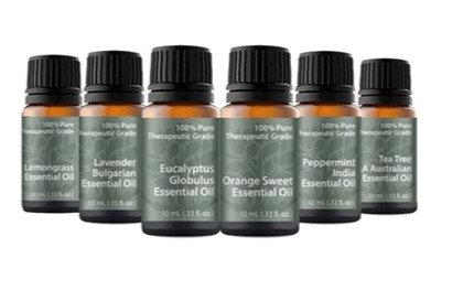 Essential Oil Variety Pack (6)Each 10 ML