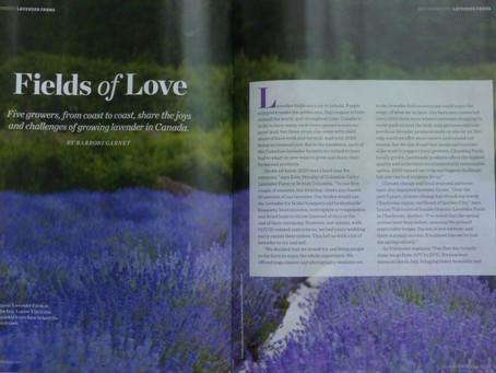 Fields of Love (Harrowsmith Magazine, Summer 2021)