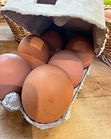 large eggs.jpg
