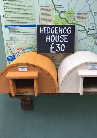 hedgehog houses 2.jpg