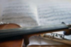 violin-3621667__480.jpg