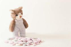 Kitten Stuffy