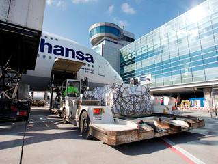 Frankfurt cargo traffic improves