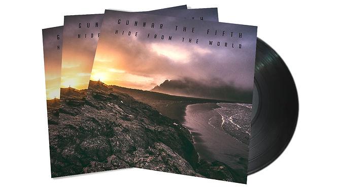 album vinyl2.jpg