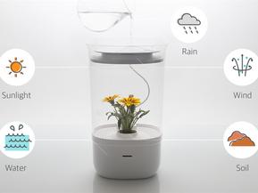 [라이프스타일] 반려견, 반려묘? 이제는 반려 식물이다. 블룸엔진, Bloomengine