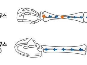 [테크] 어차피 써야 하는 마우스라면! 손목 건강을 위한 ANKER 버티컬 마우스