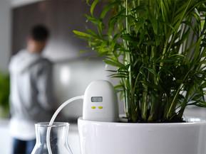[라이프스타일] 식물 물주기?자동으로 간편하게 할 수 있어!