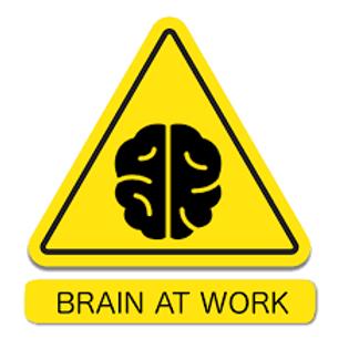 Programa tu cerebro para el exito laboral
