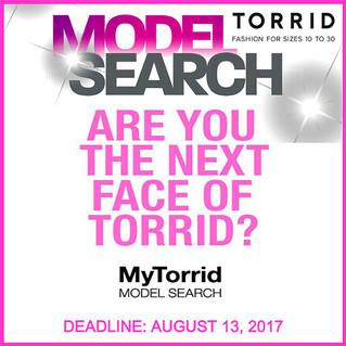 Torrid Model Search