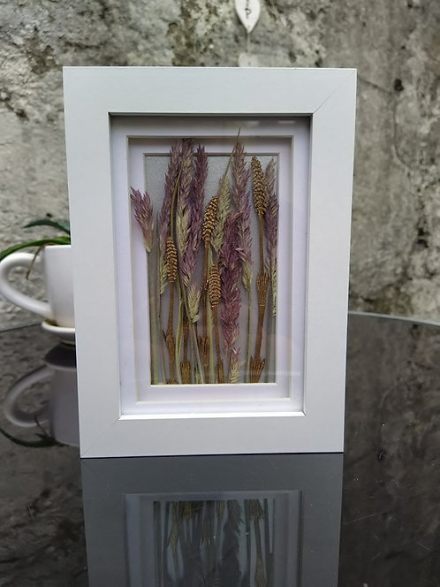 'Field'. Framed botanical art