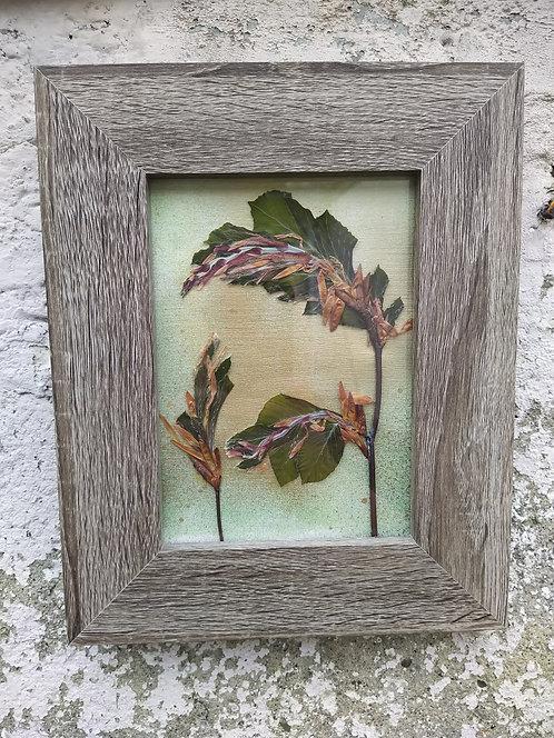 Spring Tree. Framed botanical Art