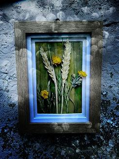 Buttercups flower art