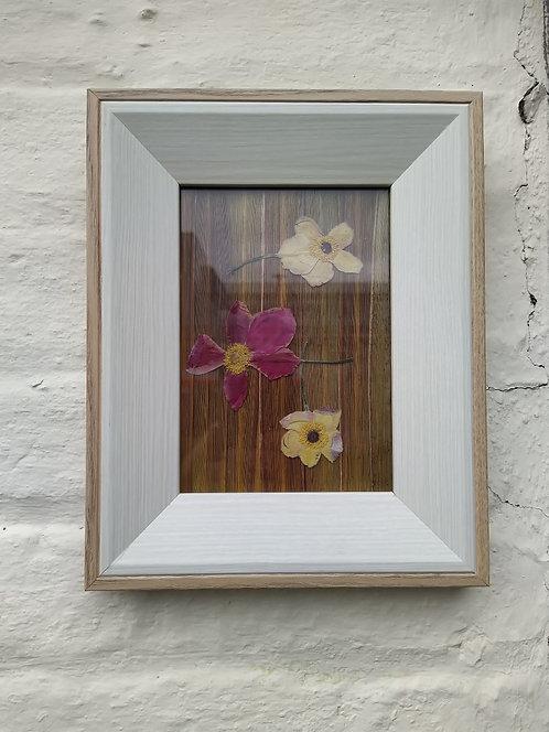 3 Flowers. Framed botanical art