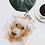 Thumbnail: Retrato personalizado de tu mascota