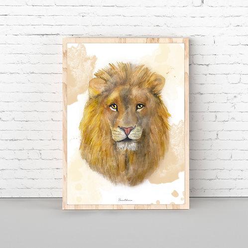 Lámina León Adulto