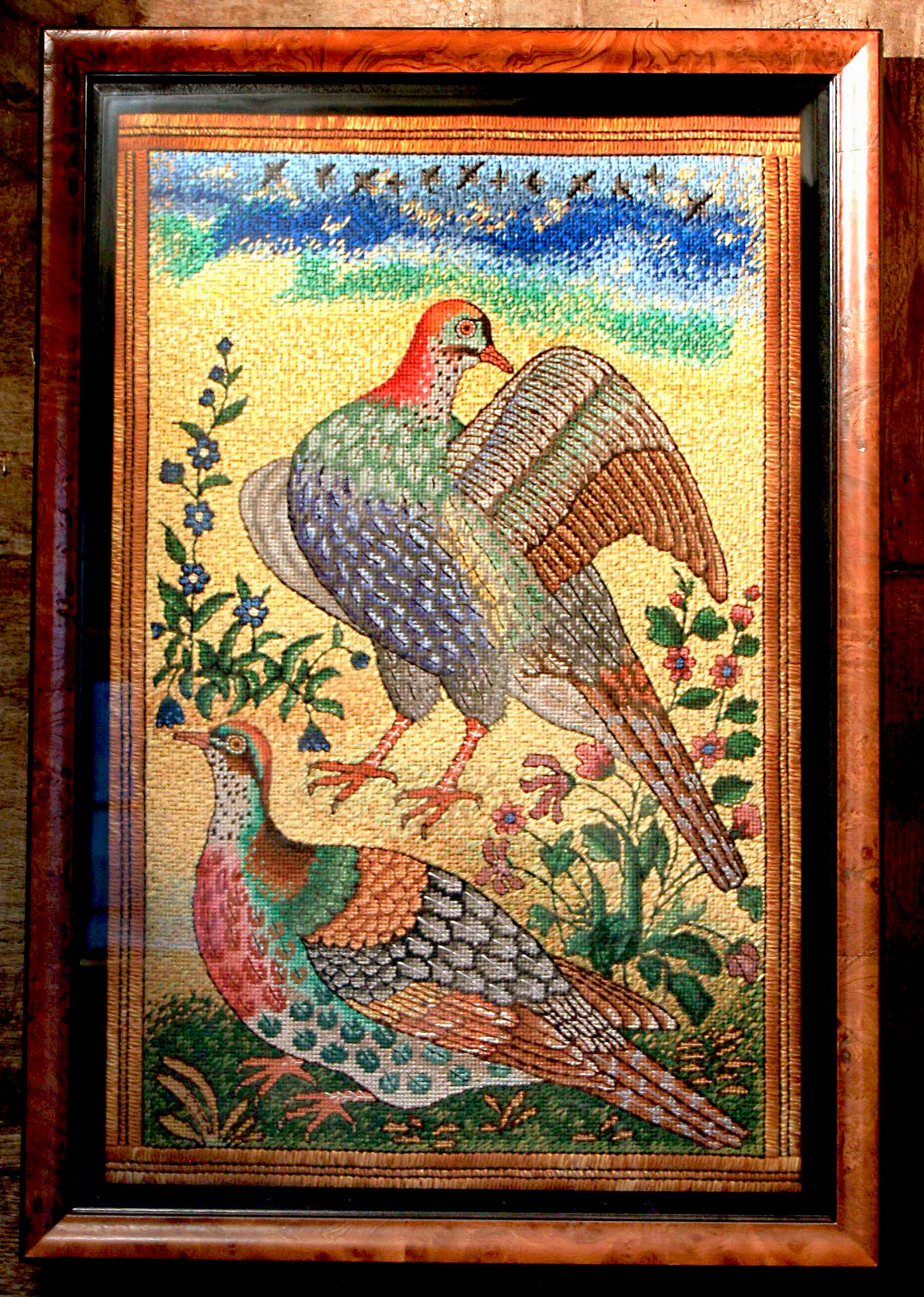 Indian Gamebirds