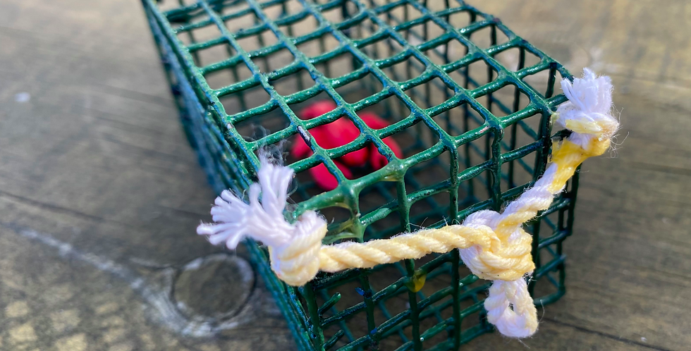 Green Mini Lobster Trap with Lobster