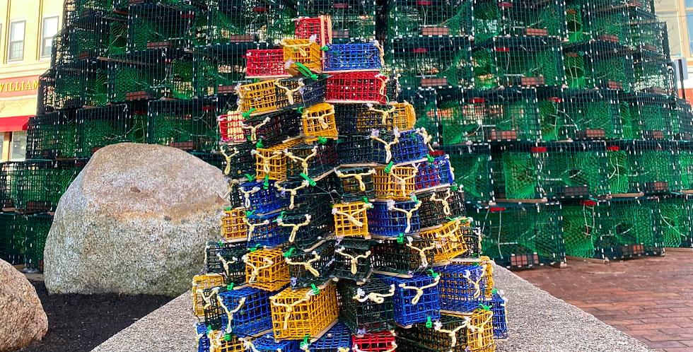 Mini Lobster Trap Tree - MultiColored