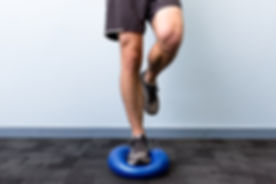 Theradisc-Balance-Single-Leg.jpg
